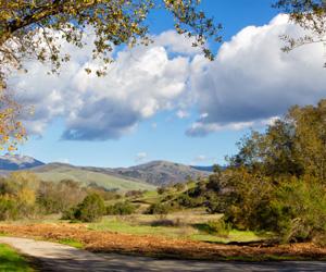 Car Loans Salinas CA